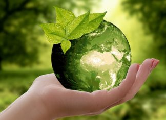 10 Easy Ways to Be More Eco Friendly