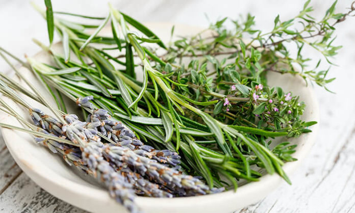 How to Dry Fresh Herbs in the Oven