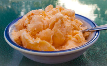 Simple Cantaloupe Melon Ice Cream (Dairy-Free!)